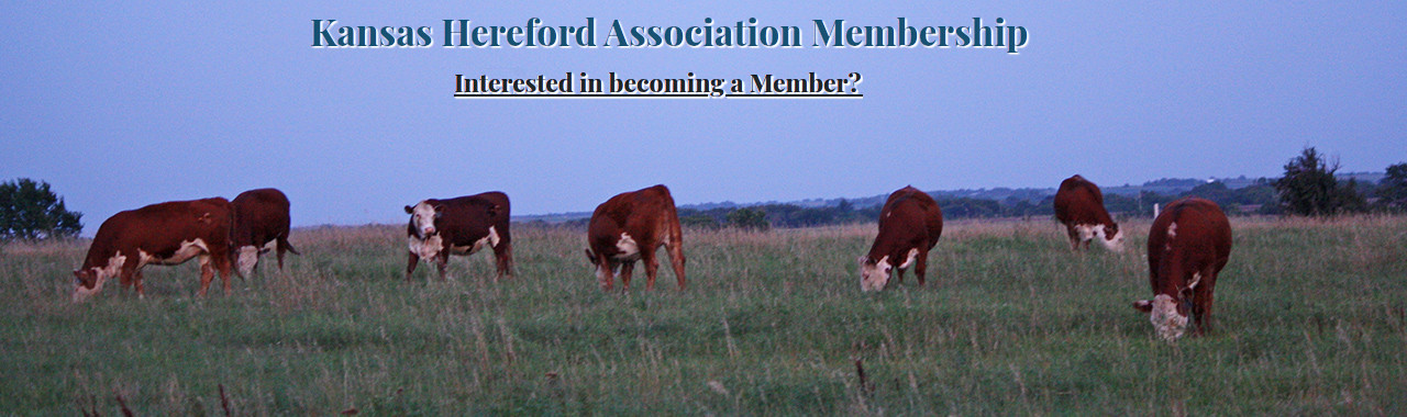 Kansas Hereford Association - Membership